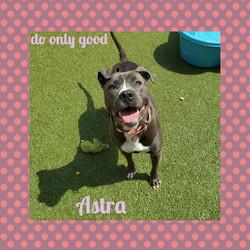 Astra