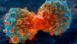 lung-cancer-cell-dividing-article.jpg