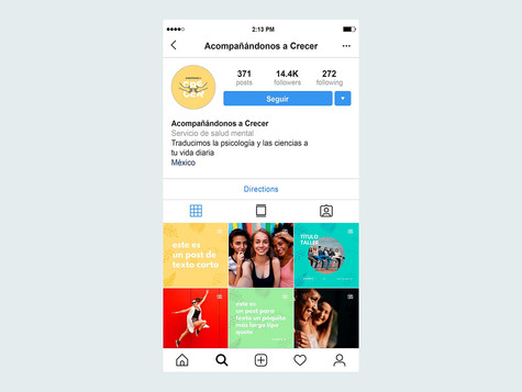 Instagram Profile Page Mockup.jpg