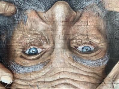 usa, muralist, street art, mural, seba c