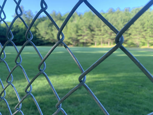 chainlink fence.jpg