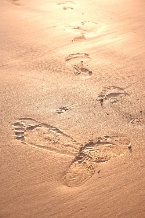 foot-4628483_1920.jpg