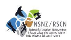25. NSNZ.jpg