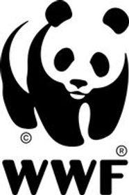 Unsere Wälder im Klimawandel WWF
