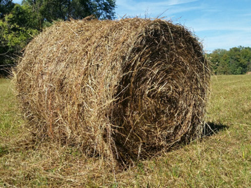 Food and bedding (Hay/ Straw bale x1)
