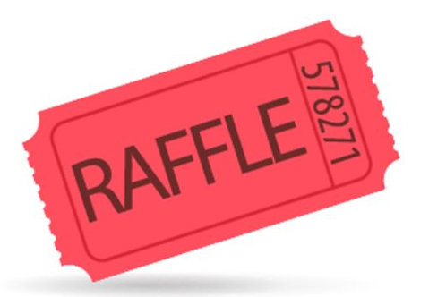 Raffle Prize Ticket (1)