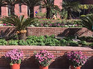 vastu design fo plant placement