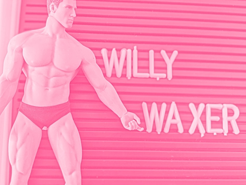 willy%20waxer_edited.jpg