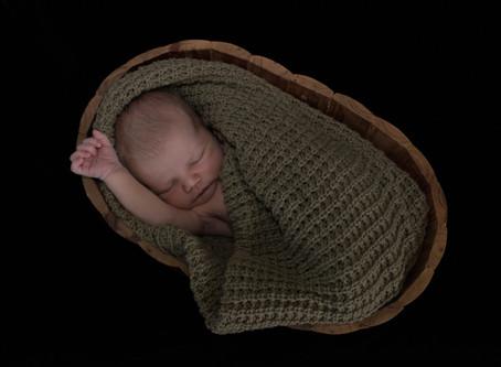 Newborns and Baby Photo Sessions