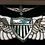 """Thumbnail: US Army OR US Navy Aviation Wings 25"""" width x 12"""""""