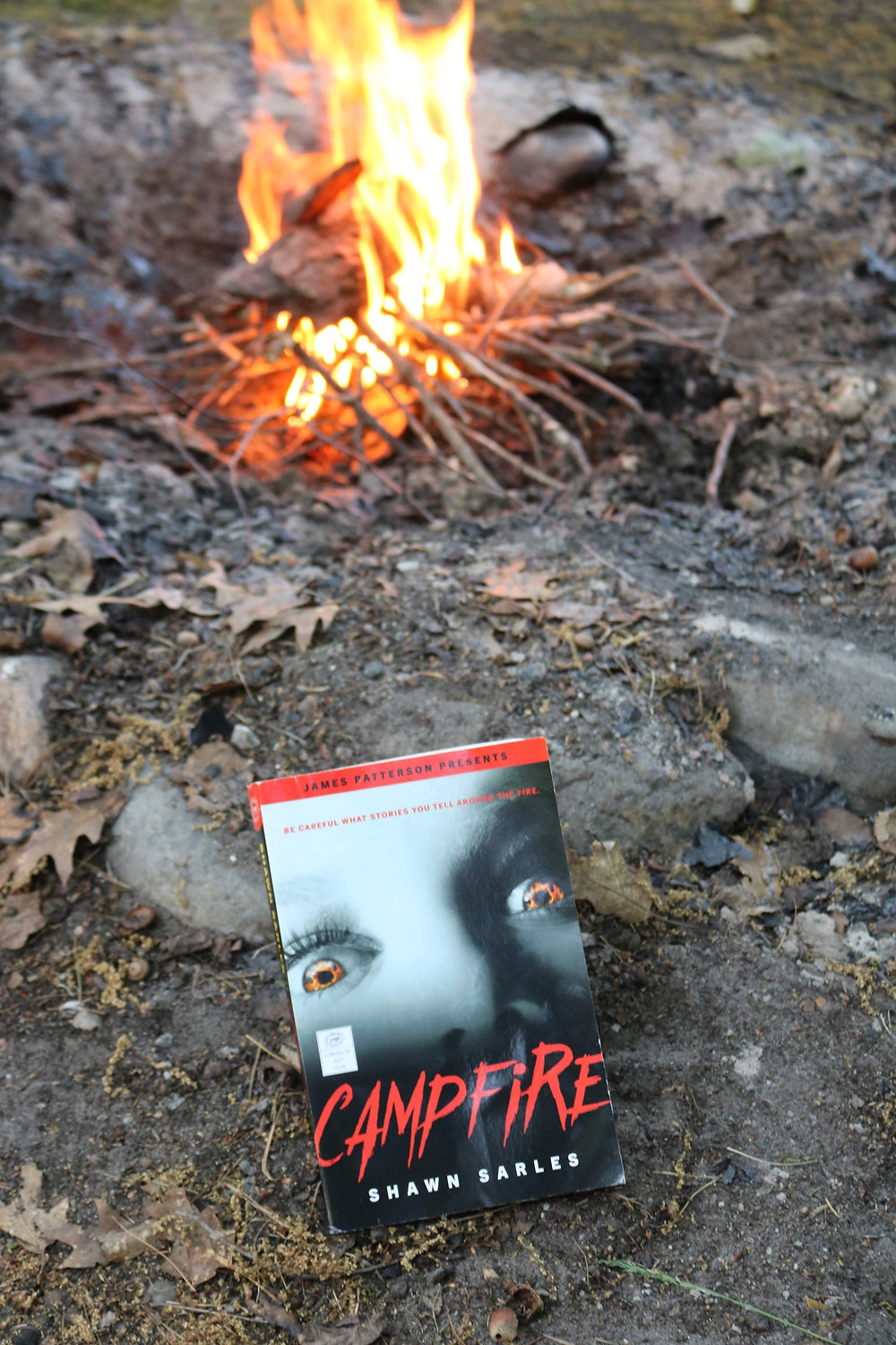 Campfire by Shawn Sarles
