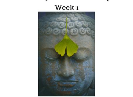 Monday Meditation Mindfulness week 1