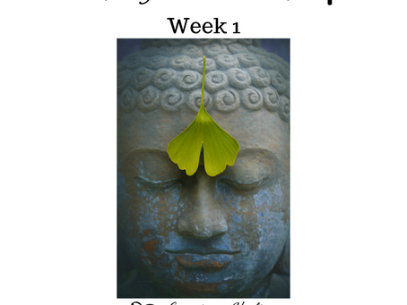 Monday Meditation Mindfulness week 1