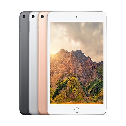 iPad mini.png