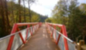 parqule_lineal bici_edited.jpg