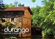 Guía general Durango
