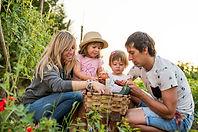 turismo rural pais vasco