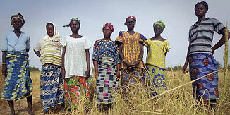 riz-au-Burkina-Faso.jpg