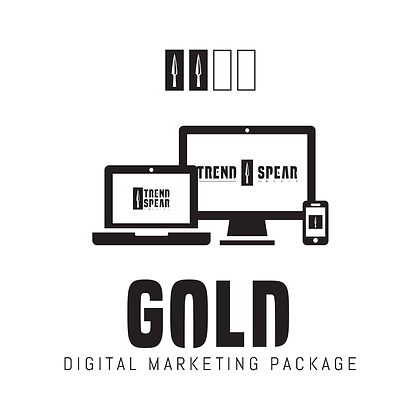 Digital Marketing Package - Gold