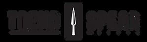 Logo_TrendSpear_black.png