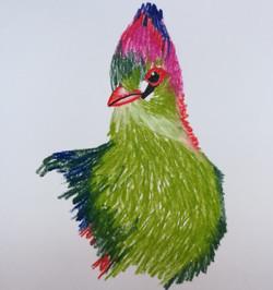 Oiseau au pastel