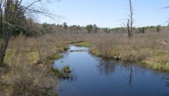 110 acres, Pleasant Valley Road, Wolfeboro