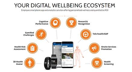 WellteQ Ecosystem3.png