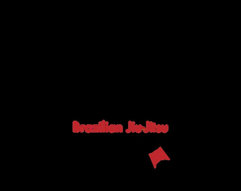 Brazilian Jiu Jitsu Washington DC