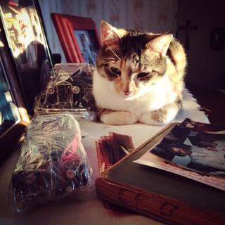 She LOVES papa Breitzmann's dresser..jpg