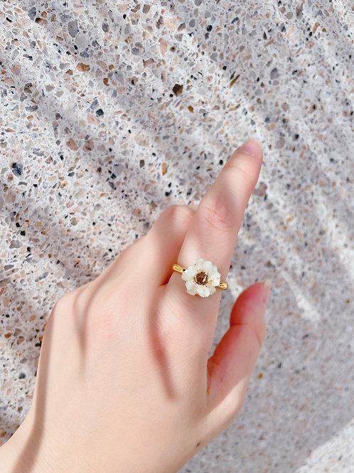 法國白梅介指 Shiny Ring (Ixodia)