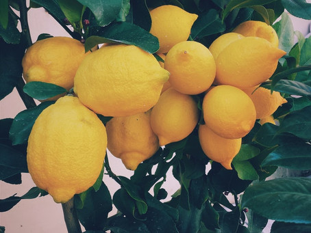 WHY HOT LEMON WATER IS SO GOOD FOR YOU