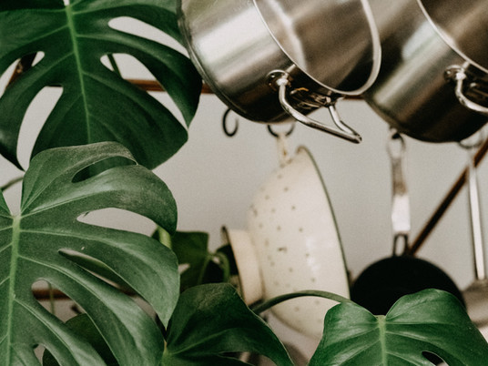 These 6 House Plants Will Literally Improve Your Health
