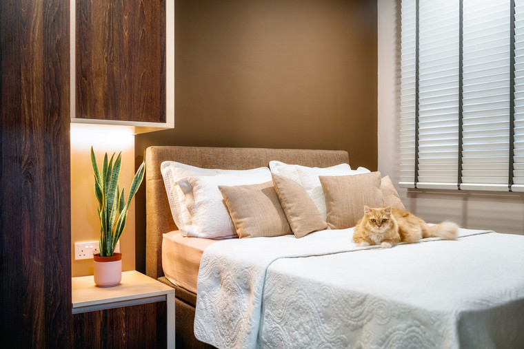 Rivervale Crescent   Bedroom With Resident Cat