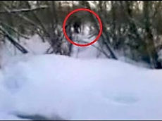 Possible Russian Bigfoot