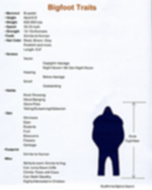 A list of Bigfoot traits