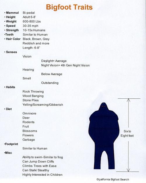 A list of Bigfoot traits