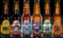 6 bottles.png