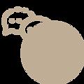 icon-2 bfad95.png