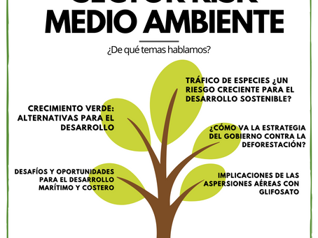 Sector Risk Monthly - Medio Ambiente