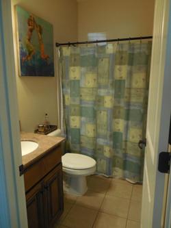 hall bath downstairs.JPG