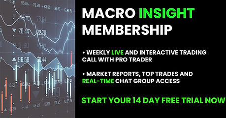 Macro Insight Banner 14. psd.jpg