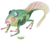 Frog Jack