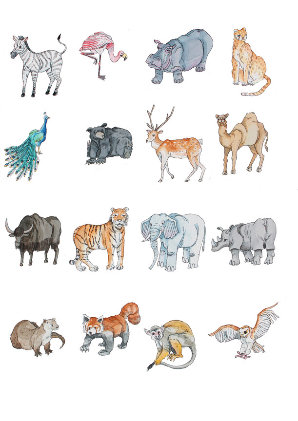 Animal Board Game