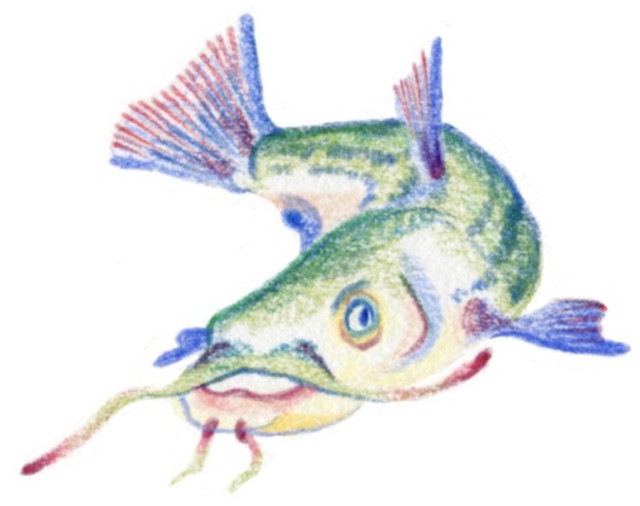 Fish Queen
