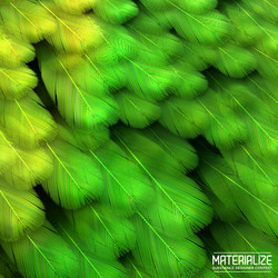 Matterialize_Feather_Template