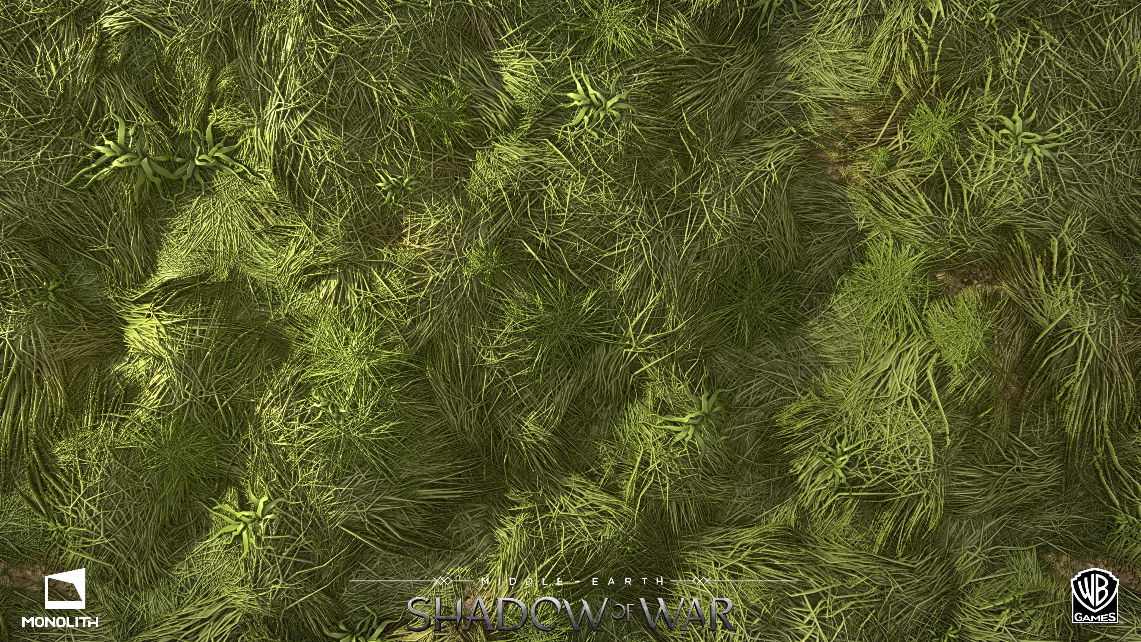 GrassLong_P