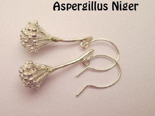 Oorbellen zilver(925) ASPERGILLES NIGER