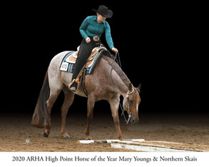 2020 High Point Horse of the Year winners