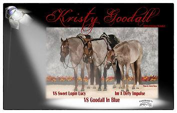 2018 Kristy Goodall