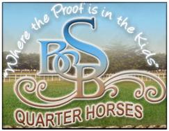 bsb logo 2019.png